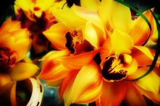 Yellow Orchids Bouquet by Ave Valencia
