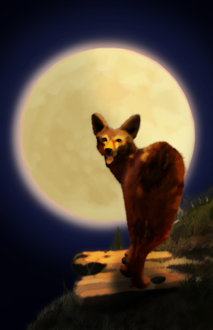 Coyote Drawing by Ave Valencia