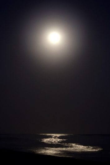 2013 Super Moon photo by Ave Valencia