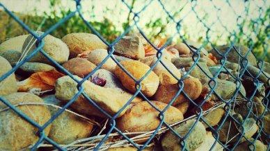 stones wire fence, piedras y alambre