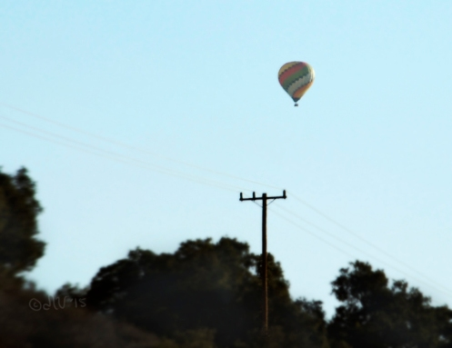Hot Air Balloon Santa Ynez Valley