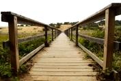 wooded path bridge, Cambria California