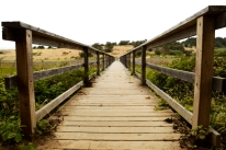 wooded path bridge, Cambria California
