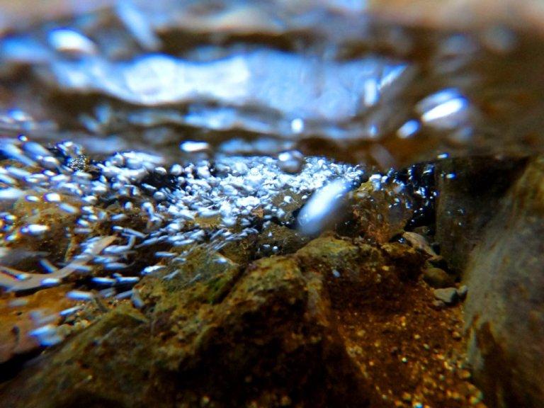 bubbly creek underwater, bubble jetsreams floaing forward above rock