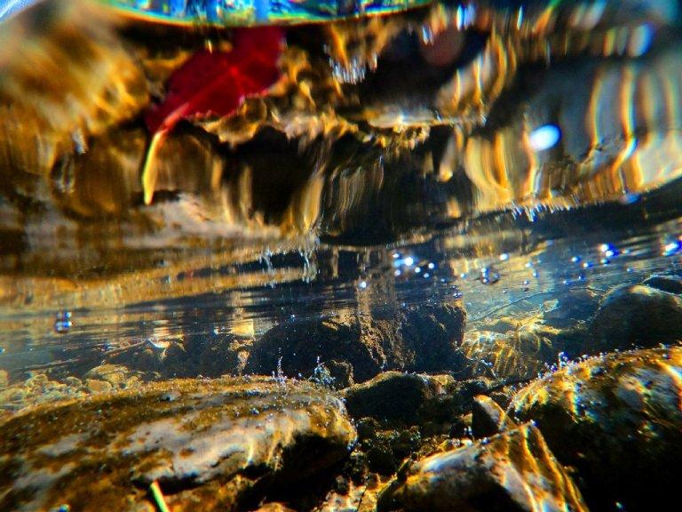 creek underwater, rocks, red leaf refracted off surface water