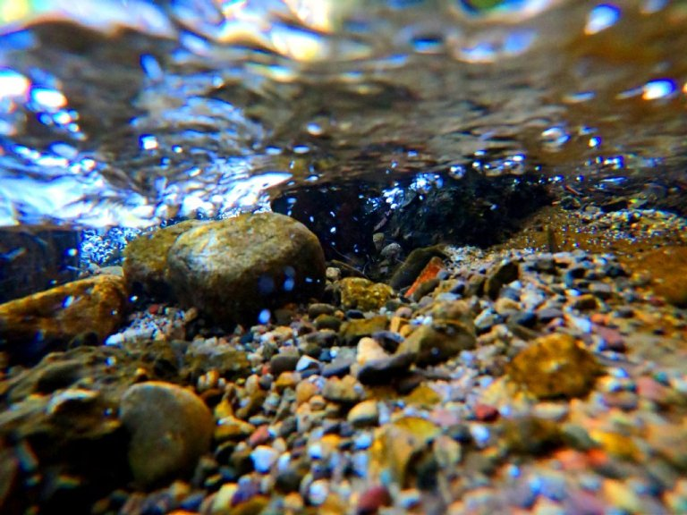 underwater in creek, rocks, pebbles and white water ripples on surface