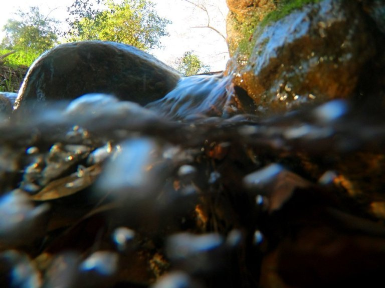 underwater in bubbly creek, water streaming down rocks