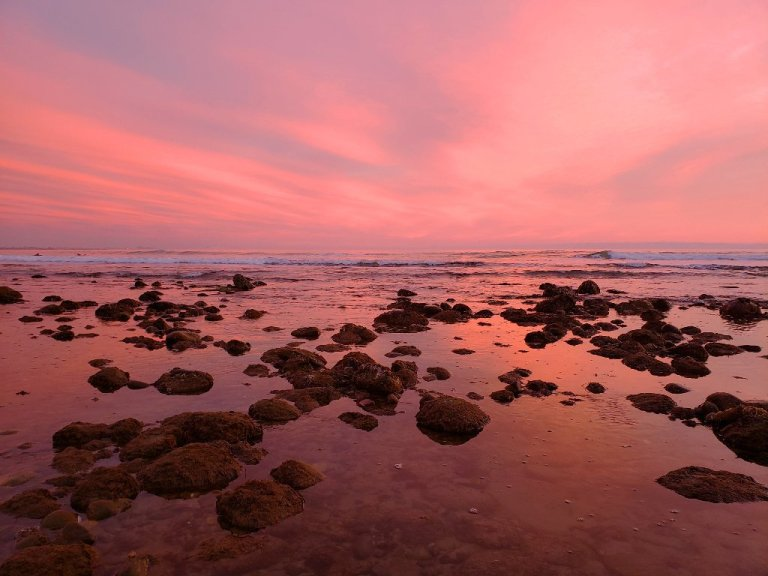 pink horizon afterglow reflects off water in tide waters caught between mossy rocks; long wave in background