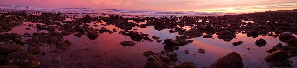 pinkish blue clouds reflect off water in tide waters caught between mossy rocks; long wave and sunset in background