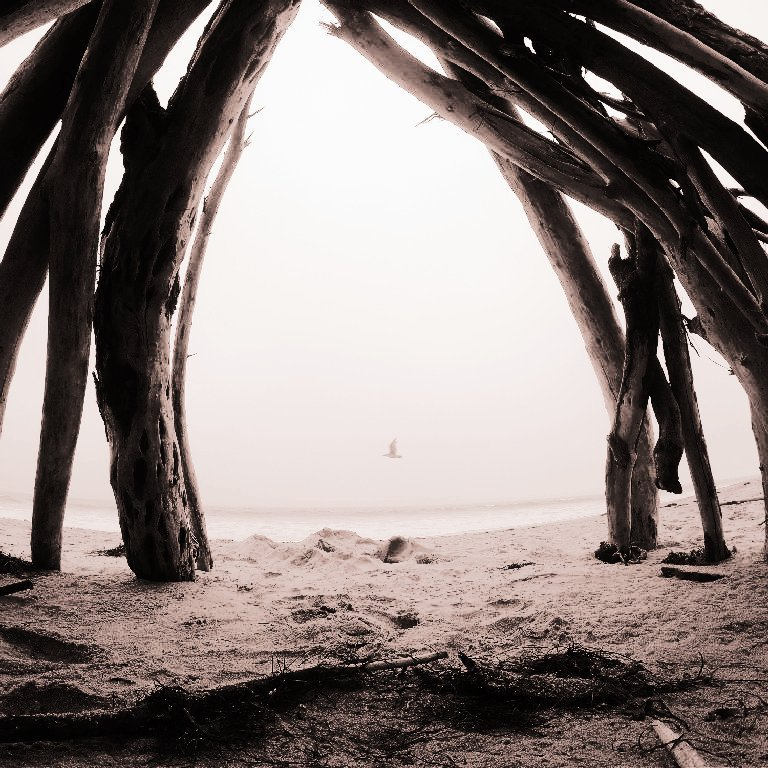 sand in foreground with dry seaweed and a teepee made from driftwood forming an arch, silhouette of a bird in flight over ocean in background, tan sepia tone