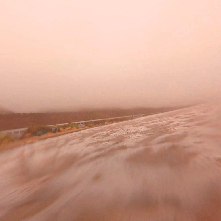 ocean foam spreading toward coastline in foreground, Amtrak train along coastline, foggy hills in background, soft blur, mauve sepia tones